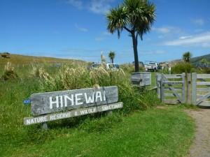 Hinewai Nature Reserve