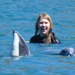 Swimming with Dolphins with Black Cate Cruises