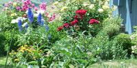 L'abri Garden