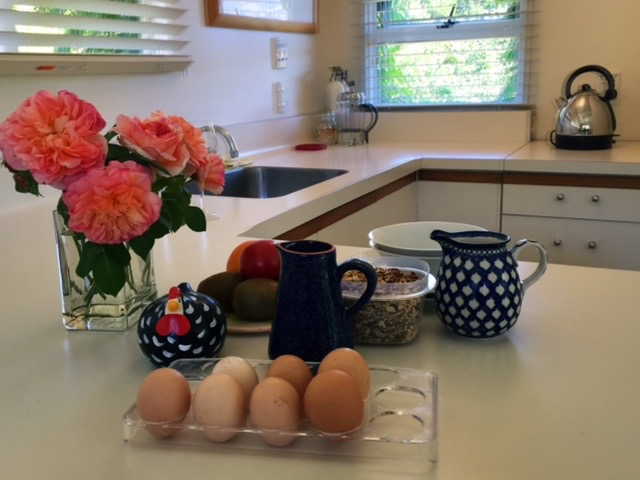 Fresh free range eggs from the garden ready for your breakfast